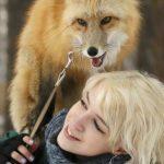 ثعلب ومعلومات عن حياة الثعالب حقيقية صور ميكس 5