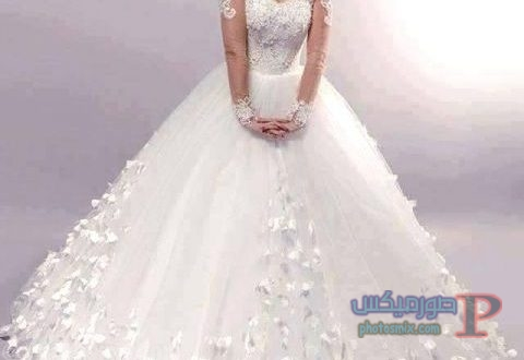فساتين زفاف 2019 فساتين دخلة صور ميكس 18