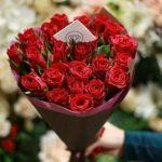 ورد أحمر وفوائد الورد الأحمر صور ميكس 2