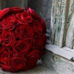 ورد أحمر وفوائد الورد الأحمر صور ميكس 20