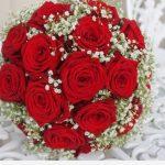 ورد أحمر وفوائد الورد الأحمر صور ميكس 27