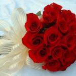 ورد أحمر وفوائد الورد الأحمر صور ميكس 31