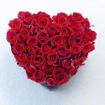 ورد أحمر وفوائد الورد الأحمر صور ميكس 34