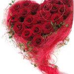 ورد أحمر وفوائد الورد الأحمر صور ميكس 35
