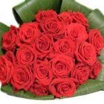 ورد أحمر وفوائد الورد الأحمر صور ميكس 49