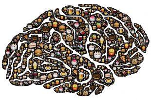 brain 954821 1280