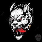 صور ذئب خلفيات و معلومات كاملة عن الذئاب 14