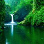 الطبيعة الخلابة أنواع الطبيعة خلفيات طبيعة طبيعة خلابة 9