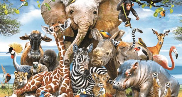 أجمل صور الحيوانات