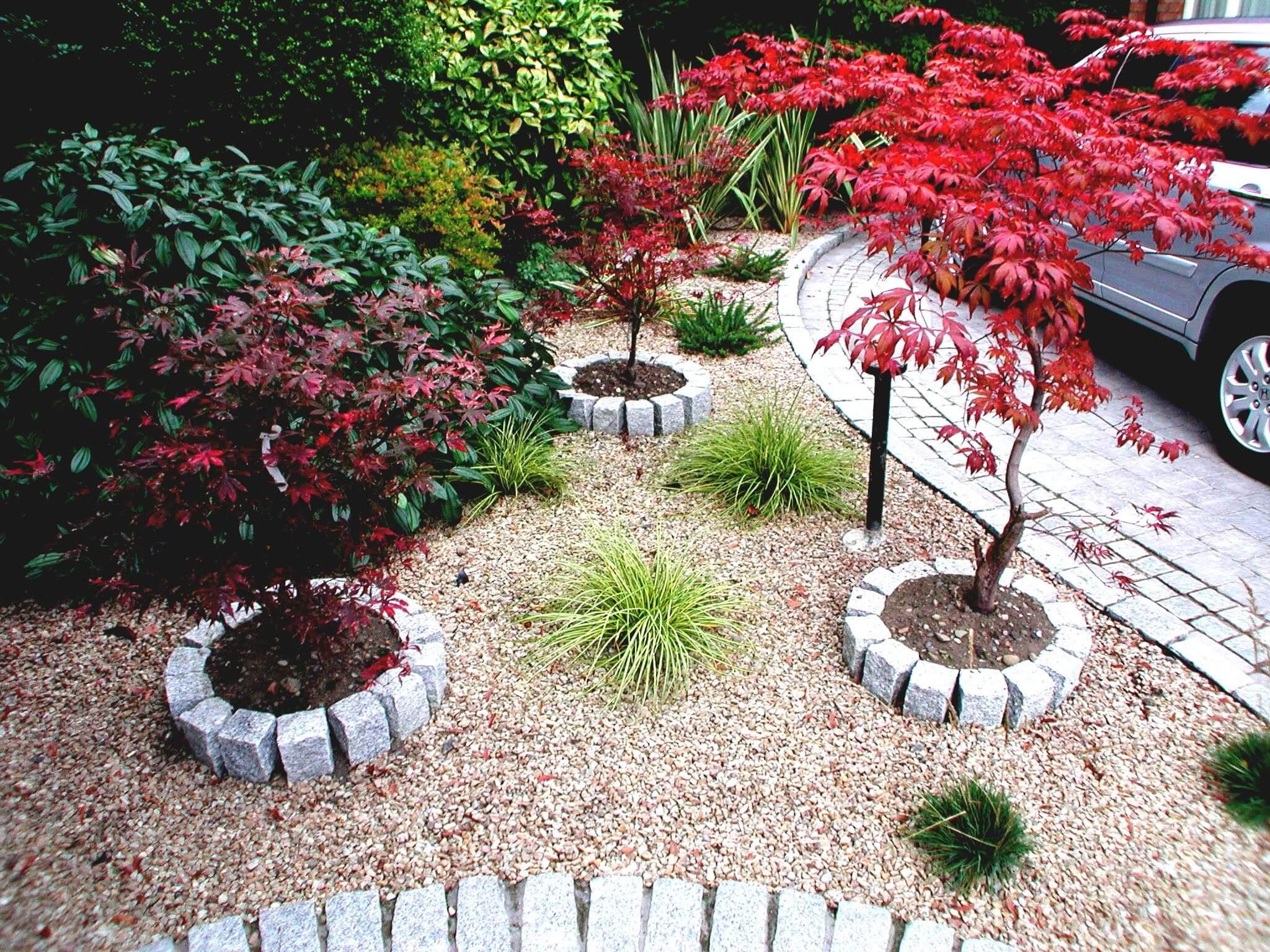 اجمل الحدائق بجودة عالية 15