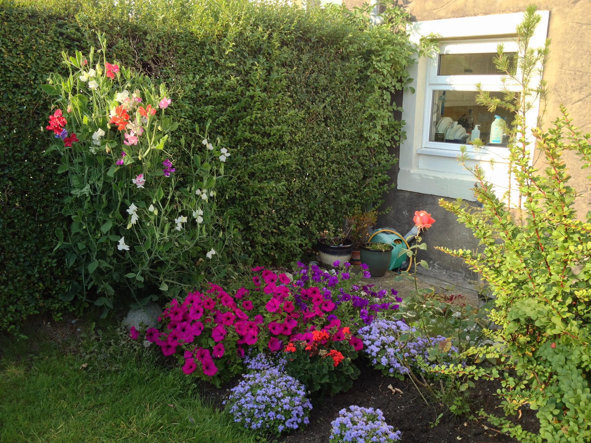 اجمل الحدائق بجودة عالية 4