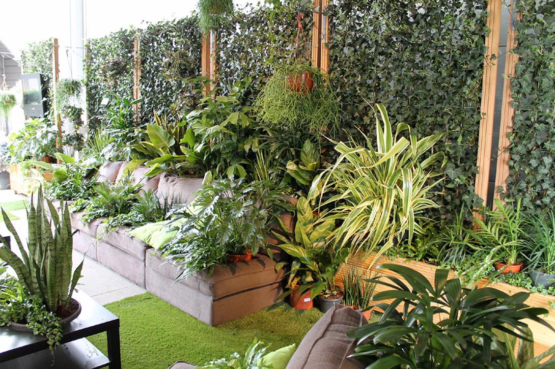 اجمل الحدائق بجودة عالية 5