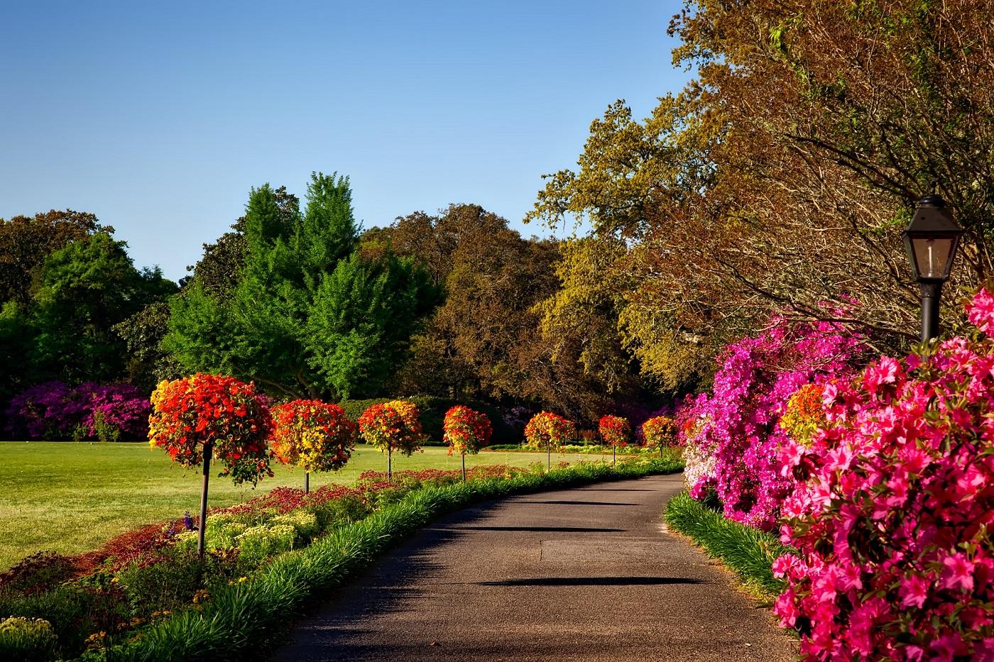 اجمل الحدائق بجودة عالية 8