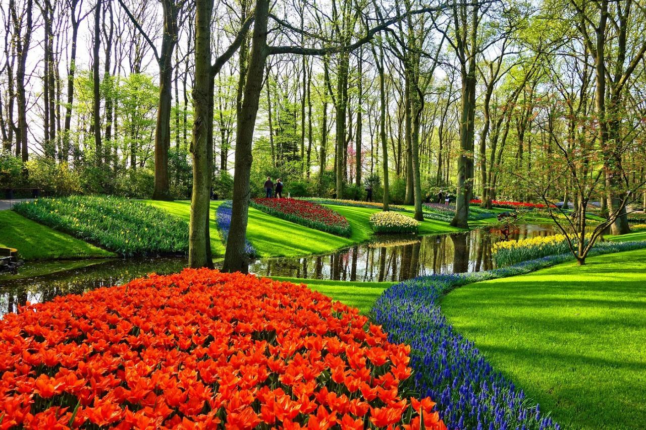اجمل ديكورات الحدائق 8
