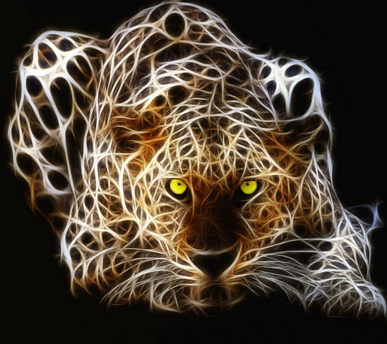 اجمل صور الحيوانات 2021 5