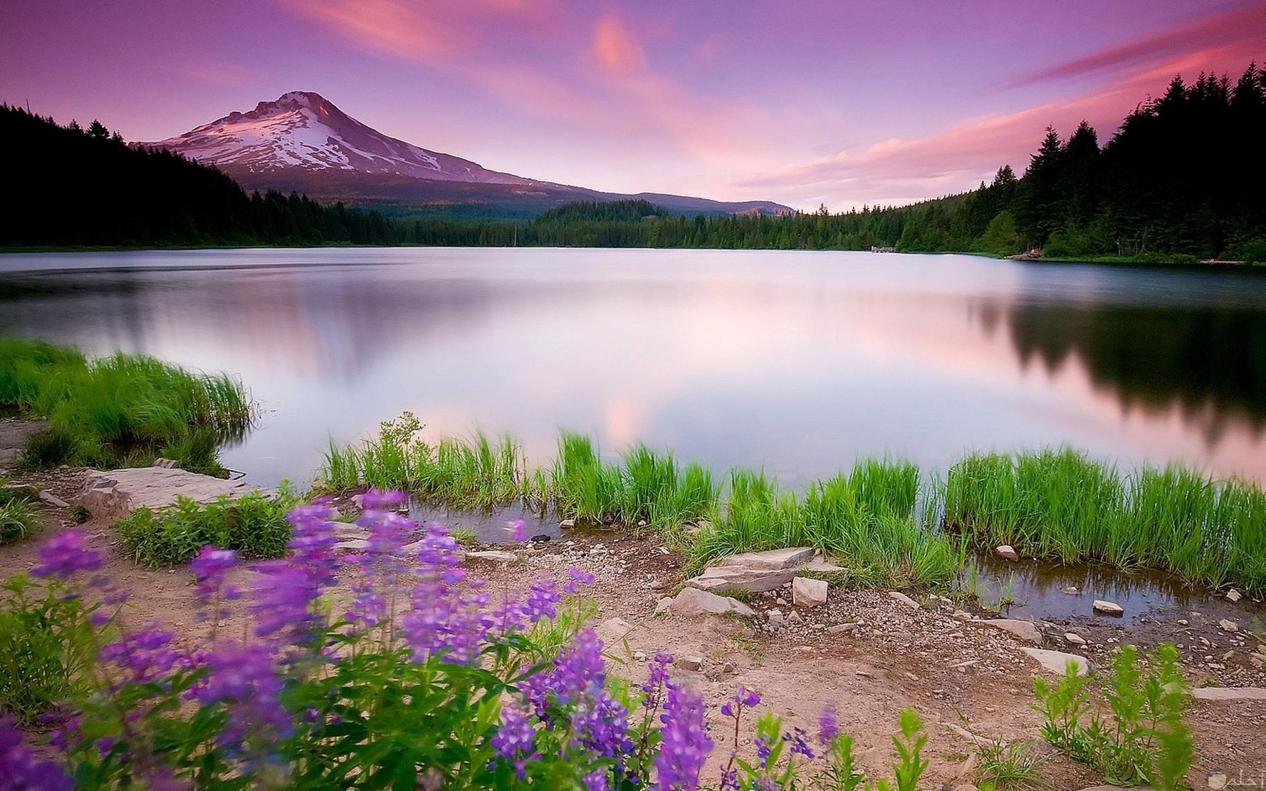 اجمل صور الطبيعة الخلابة 11