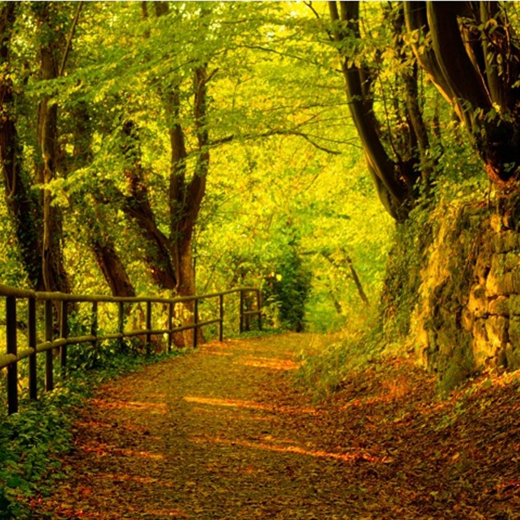 اجمل صور الطبيعة الخلابة 8