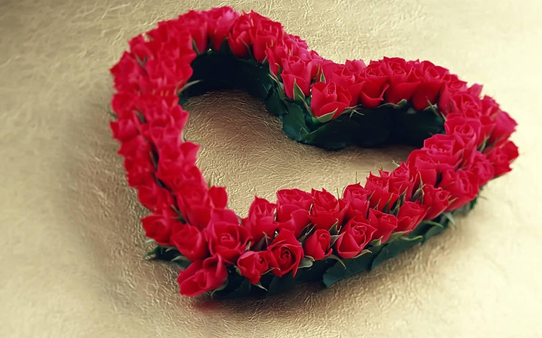 صور الوردة الحلوة 7