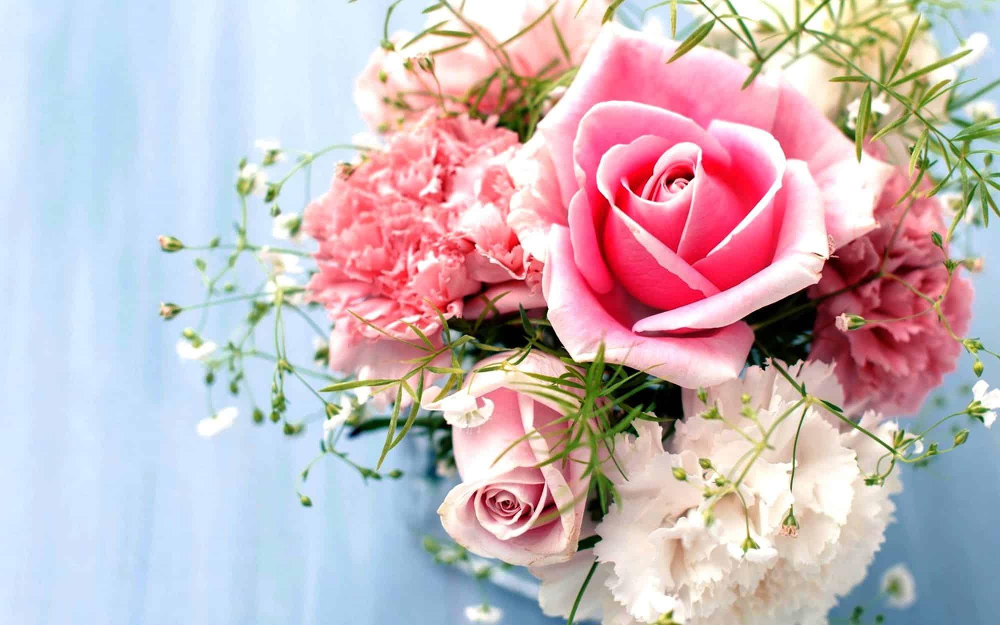 الورود لصور الملف الشخصي 3