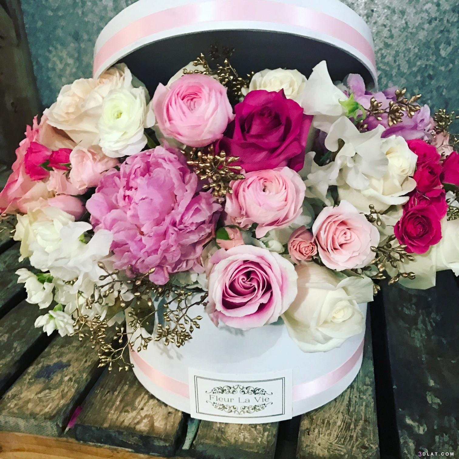 الزهور للملف الشخصي 6