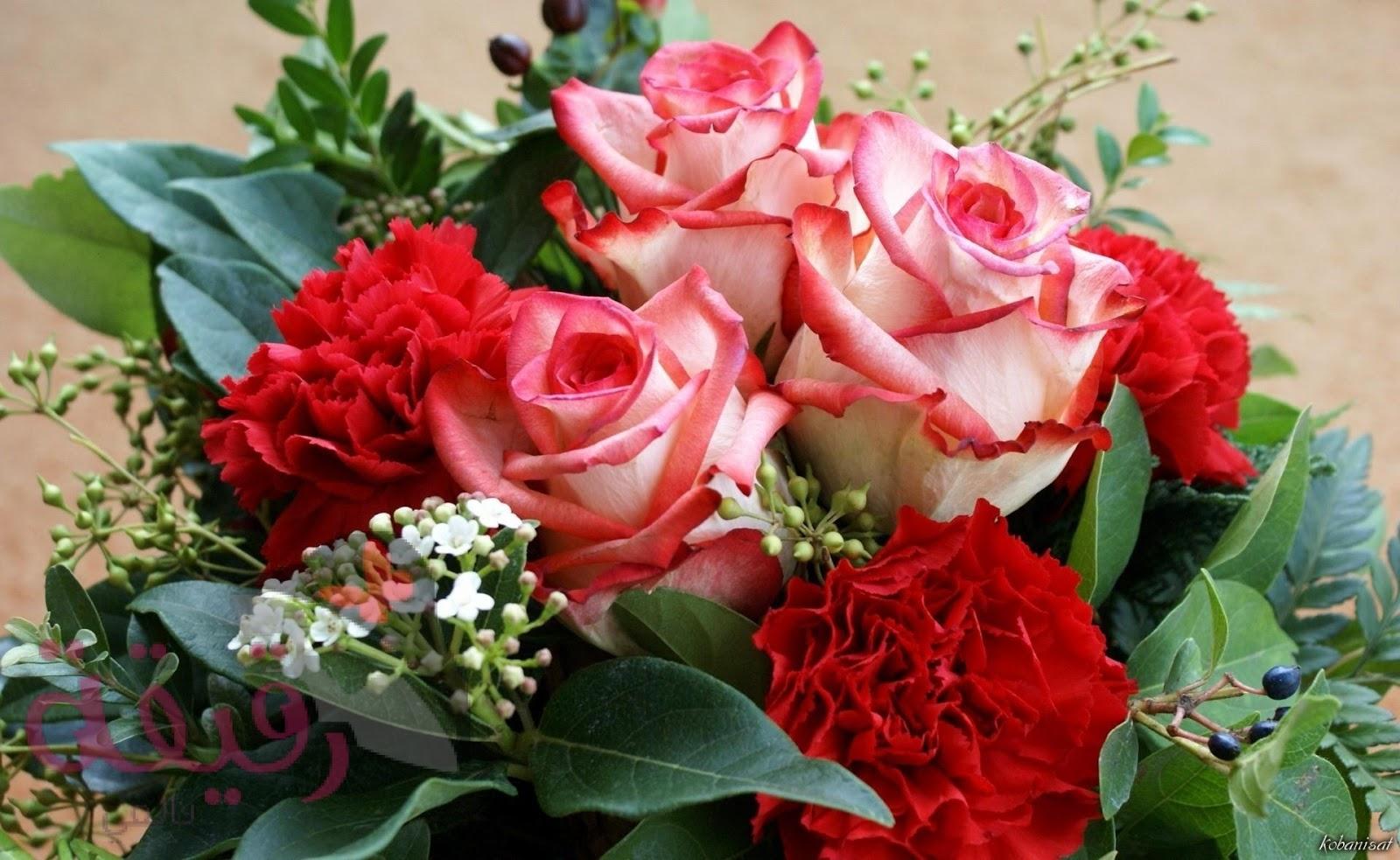 صور الورود للتصميم 4 1